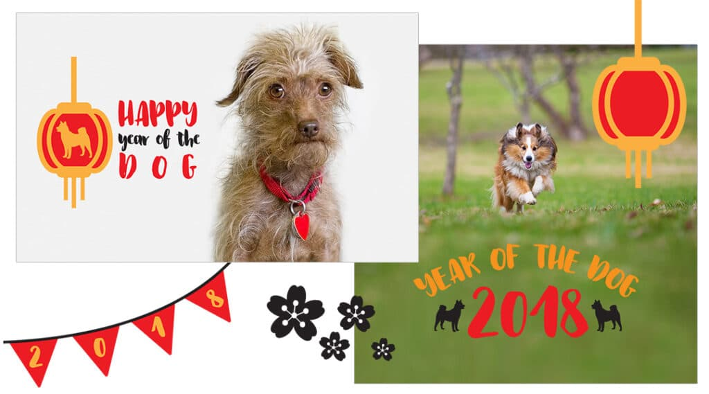 YOTD Featured 1024x569 - Image Overlays Year of the Dog