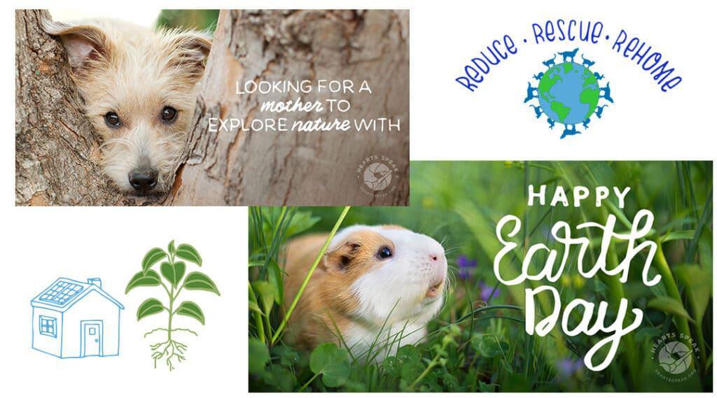 EarthDay 1024x569 - Social Toolkit: Earth Day