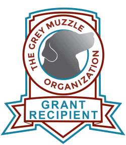 heartsspeak-grant-recipient