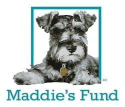 maddies-fund_square_color-v1