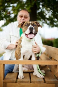 102616 STLCO Justin 03 200x300 - Easy Tips for Great Shelter Pet Photos