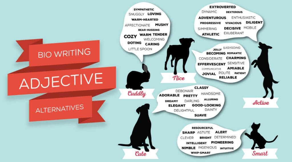 AdjectivesFeatured 1024x569 - Bio Writing Tools Adjective Alternatives