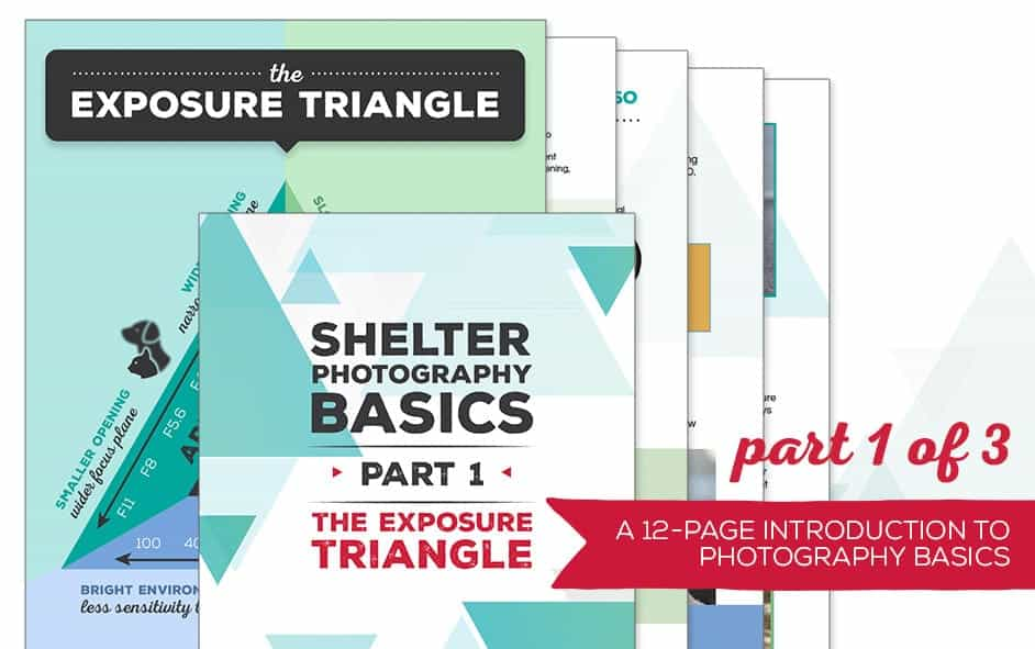 Exposure MainImageTemplate - Shelter Photography Basics, Part 1: The Exposure Triangle