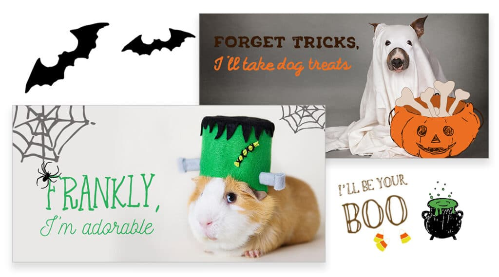 Halloween Featured 1024x569 - Social Toolkit Halloween