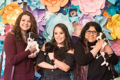 Puppy Brunch 510x340 - Out-Of-The-Box Event Ideas to Build Loving Community