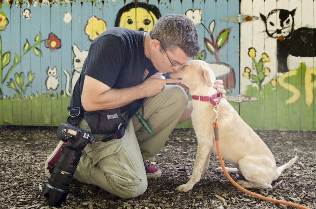 Rebekah Nemethy PR 0115 dogs westchester spca with hearts speak 16 09 21 1 1024x678 - Where Do Your Stories Go?