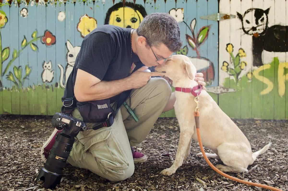 Rebekah Nemethy PR 0115 dogs westchester spca with hearts speak 16 09 21 1 - Where Do Your Stories Go?