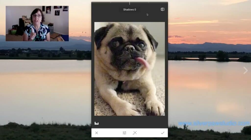 SilverPawStudio FB Live Screen Cap 8 1024x573 - Live, Authentic, and Imperfect The Power of the Live Stream