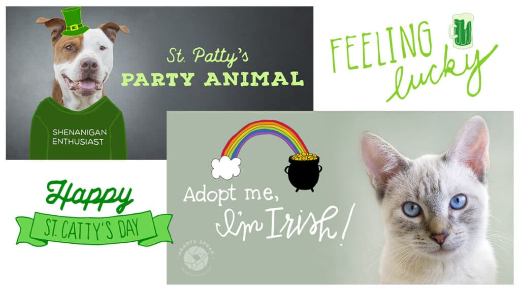 StPats Featured 1024x569 - Social Toolkit St. Patrick's Day
