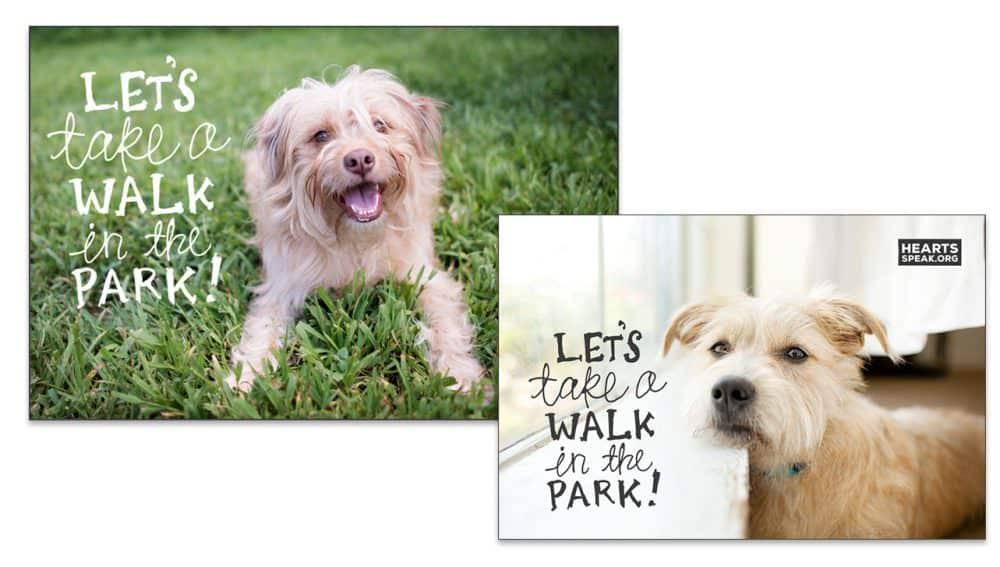WalkExample e1493267128230 - 'Let's Take a Walk' Image Overlay