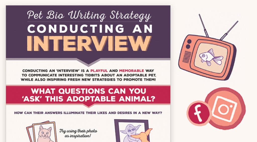 interview featured 1024x569 - Pet Bio Writing: Interview Strategy Infographic