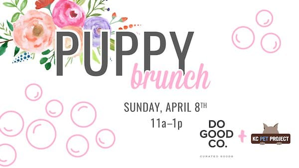 puppy brunch 01 - Out-Of-The-Box Event Ideas to Build Loving Community