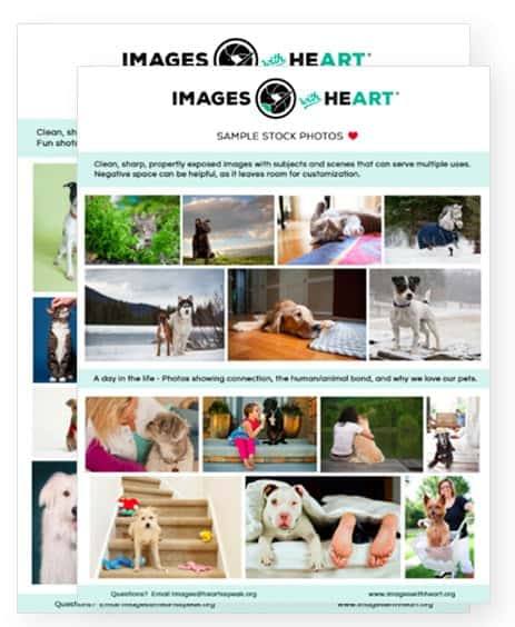 sampleguides 2 - Images With HeART Submission Example Guides
