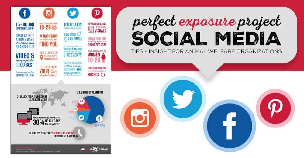 socialinfo3-copy