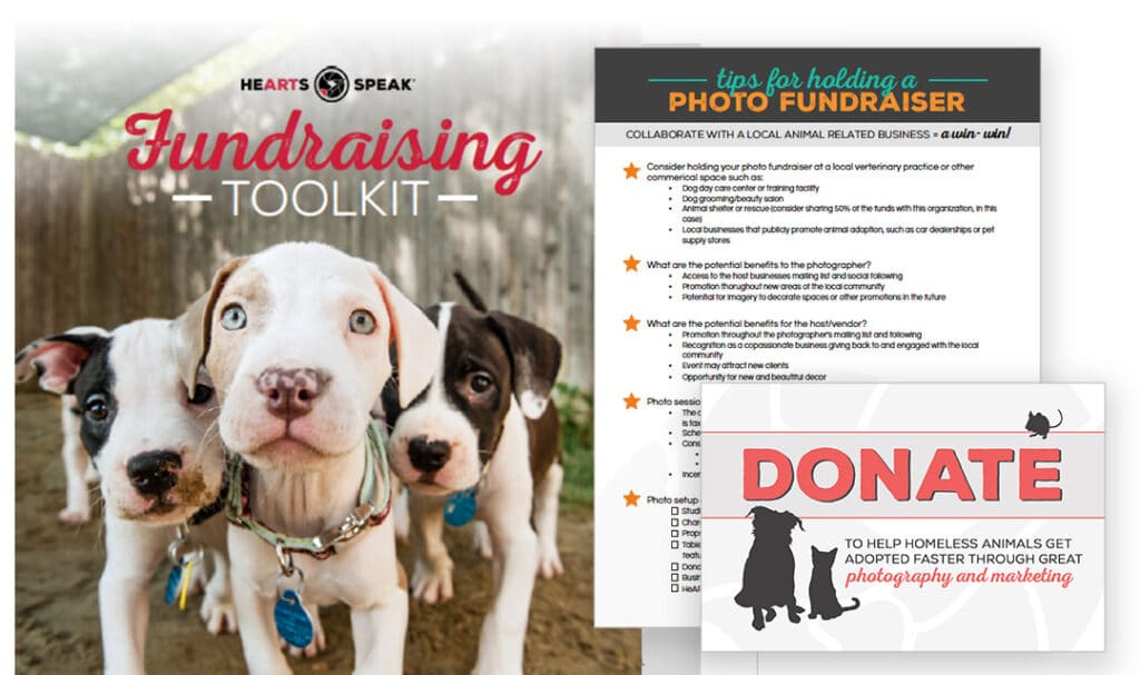 FundraisingToolkit Featured 1024x607 - Fundraising Toolkit