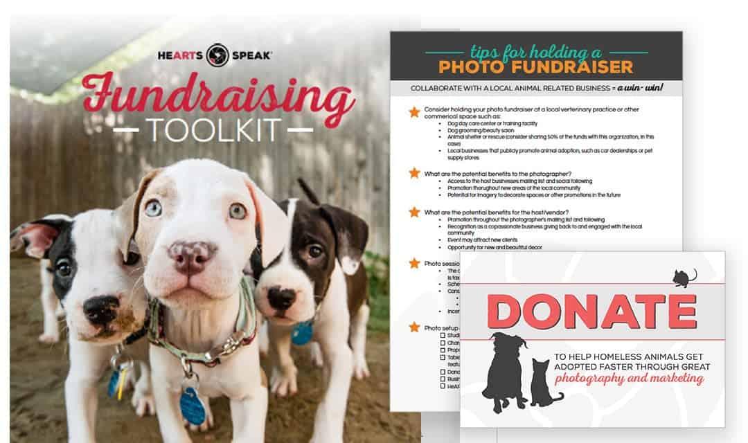 FundraisingToolkit-Featured