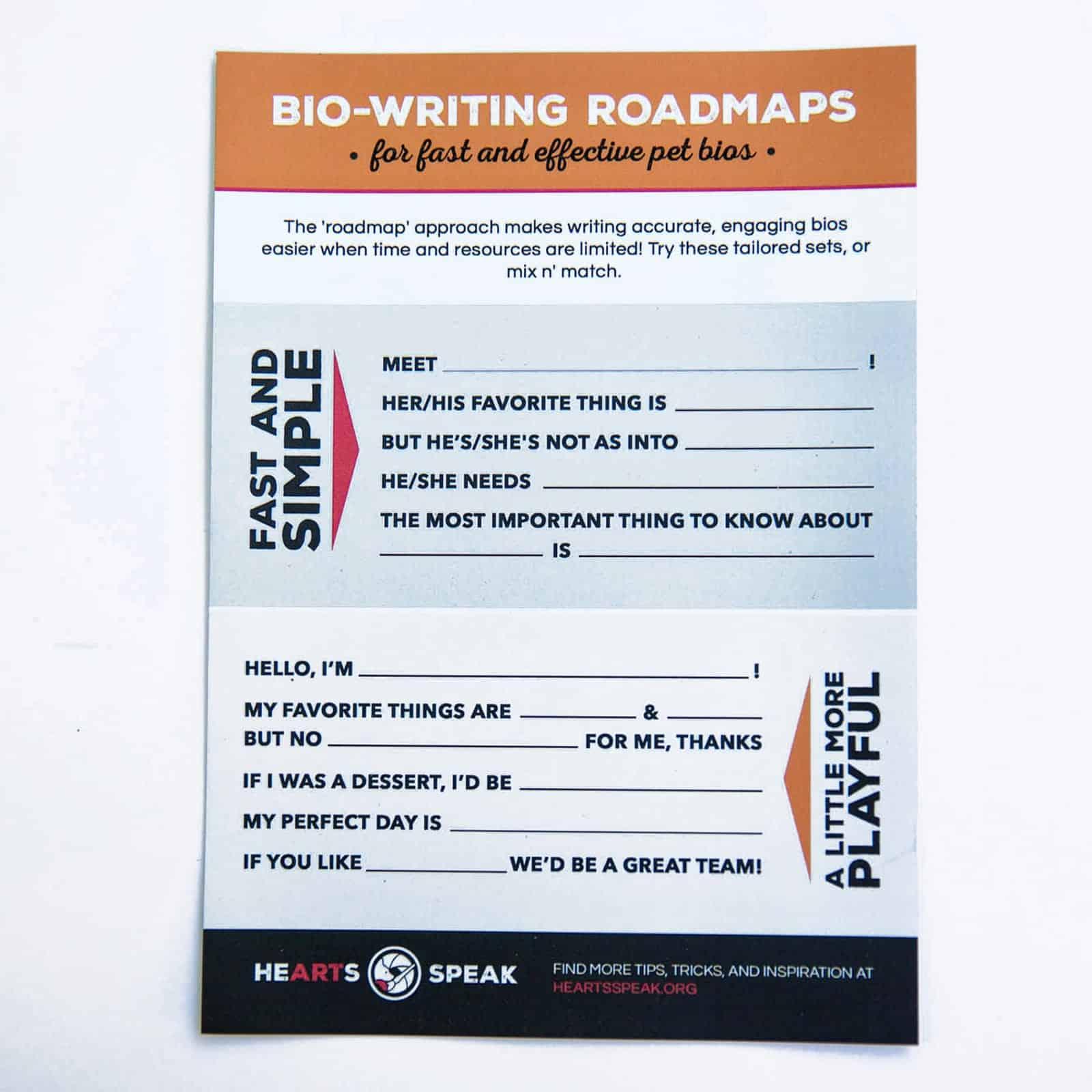 5M4A9152 - Magnet - Bio Writing Roadmap