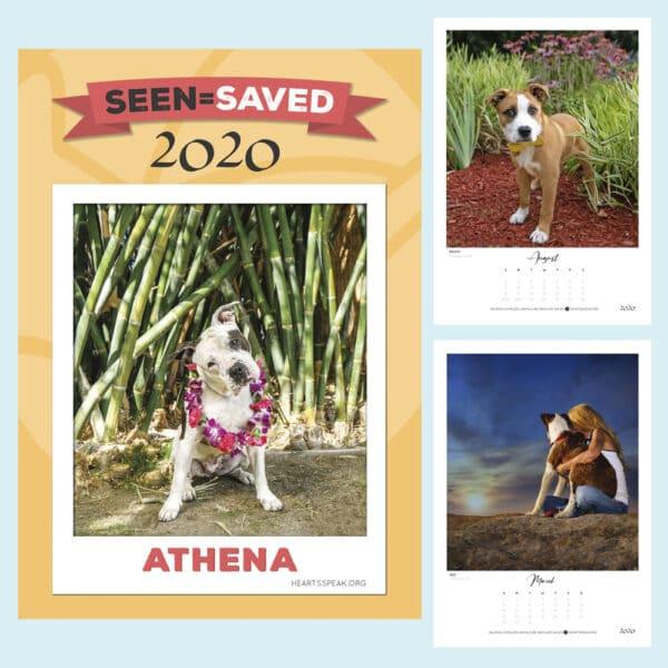 Calendar Product Image 2020 600x600 - 2020 Calendar: Seen=Saved Stories