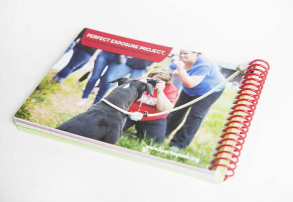 FieldGuide Back New 600x414 - Shelter Photography Field Guide