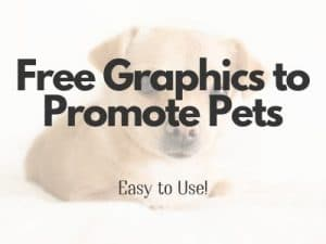 Free graphics 1 300x225 - Communications & Marketing Guide for Shelters, Amid COVID-19