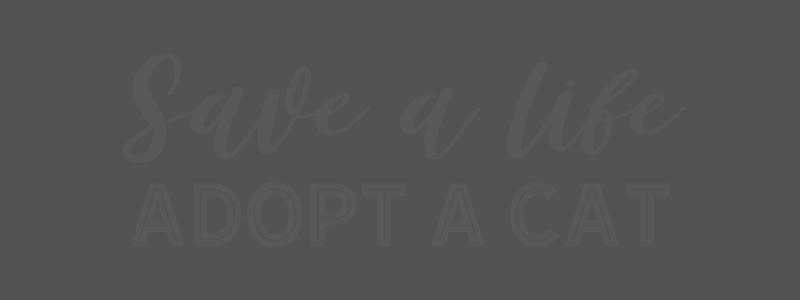 Save a life – adopt a cat overlay