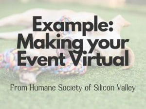 sample virtual event button 300x225 - Communications & Marketing Guide for Shelters, Amid COVID-19