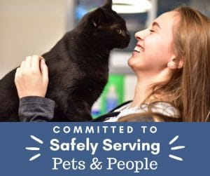 Committed to safely serving pets and people template 300x251 - Keep The Community Informed: Overlays + Customizable Templates for Coronavirus Updates