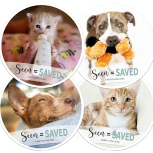 4Coasters 300x300 - Drink Coaster Set - Seen = Saved