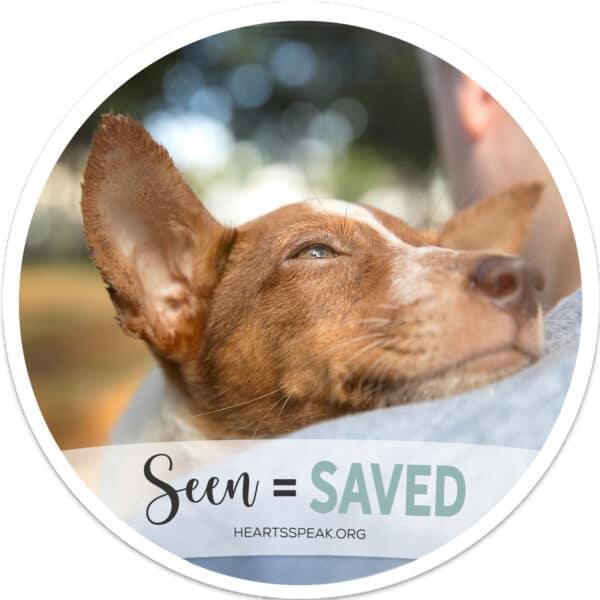 DogOnShoulderCoaster 600x600 - Coaster Set - Seen = Saved