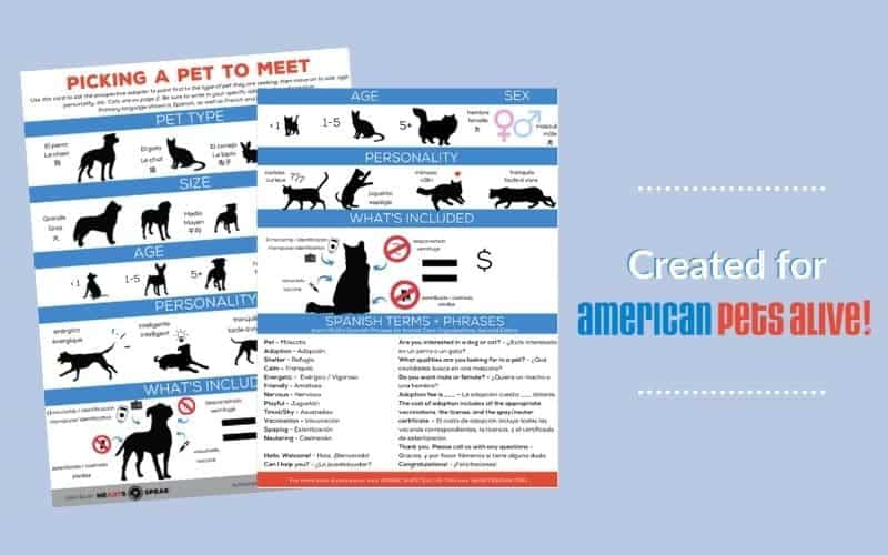 Preview of the two page worksheet to help people who speak different languages better communicate about pet adoptions