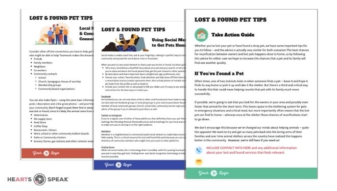 Editable Template: Lost & Found Pet Action Guide